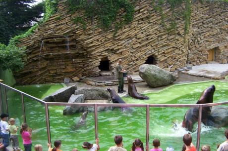 zoo-lesna-2008-010-2
