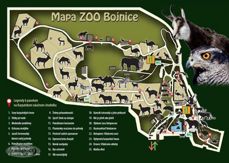 zoo2-2